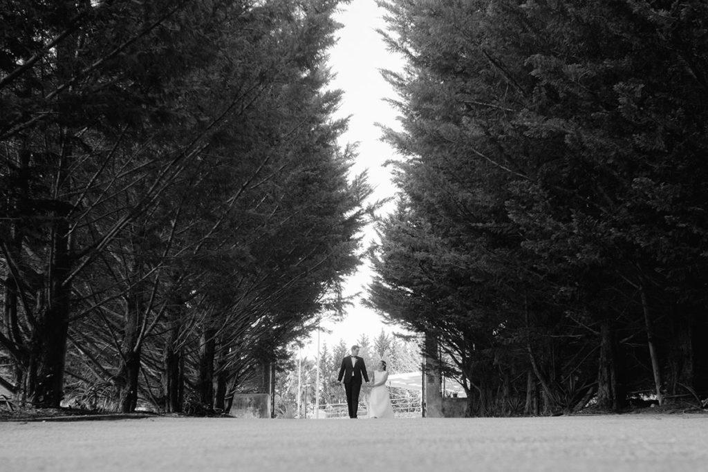 Fotógrafos profissionais de casamentos